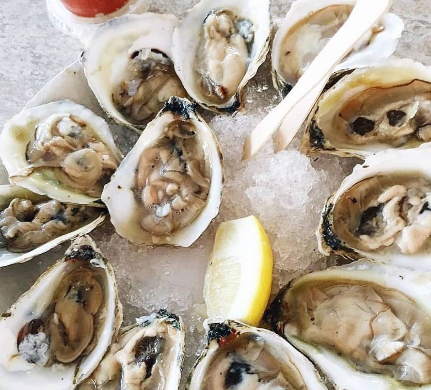 http://mdturk.com/wp-content/uploads/2020/11/How-to-Eat-Raw-Oysters.jpg